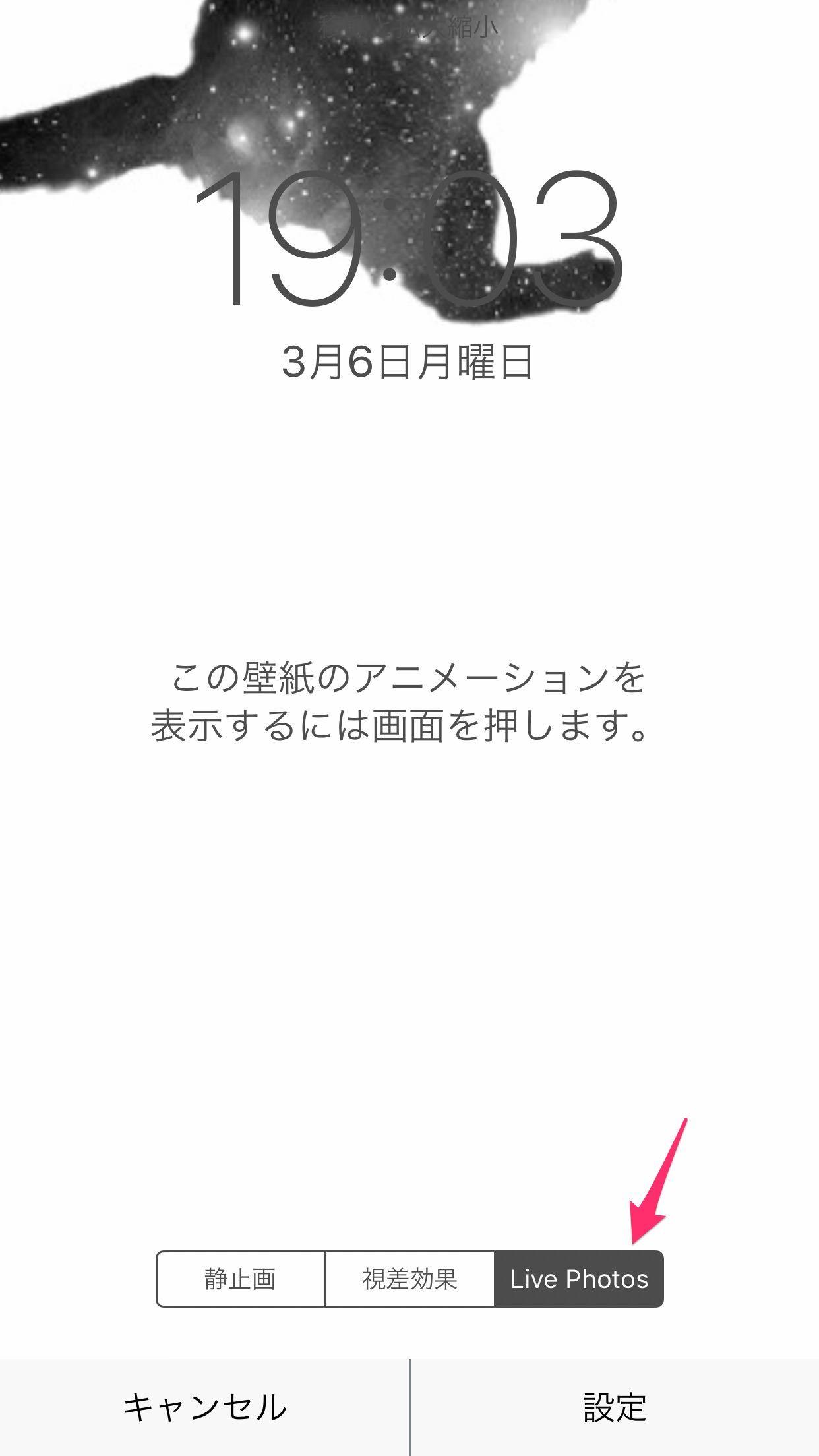 Livephoto Wallpaper 壁紙 教科書 お問い合わせフォーム