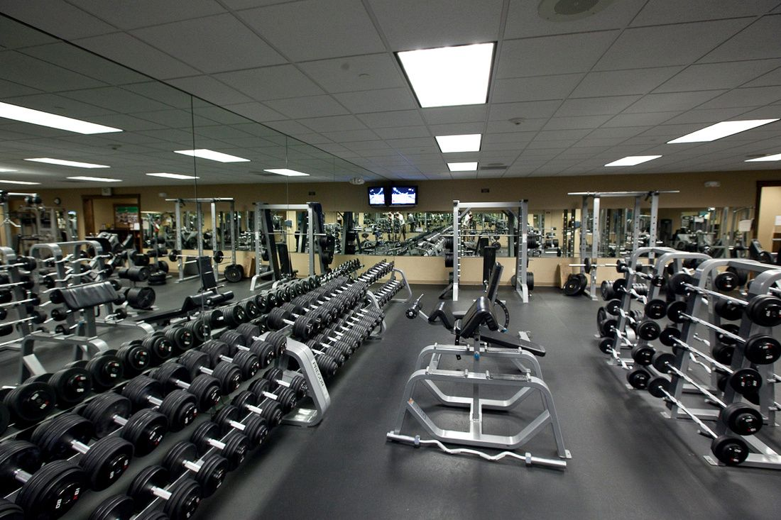 The School By Clarence Harley By Clarence Gym Gym Accessories Gym Weights