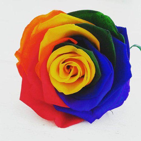 """PROMO DE NOEL Avec le code """"MOINS20"""" Bénéficiez d'une réduction sur votre commande de -20% ! http://www.artifleurs-fleurs-artificielles.com"""