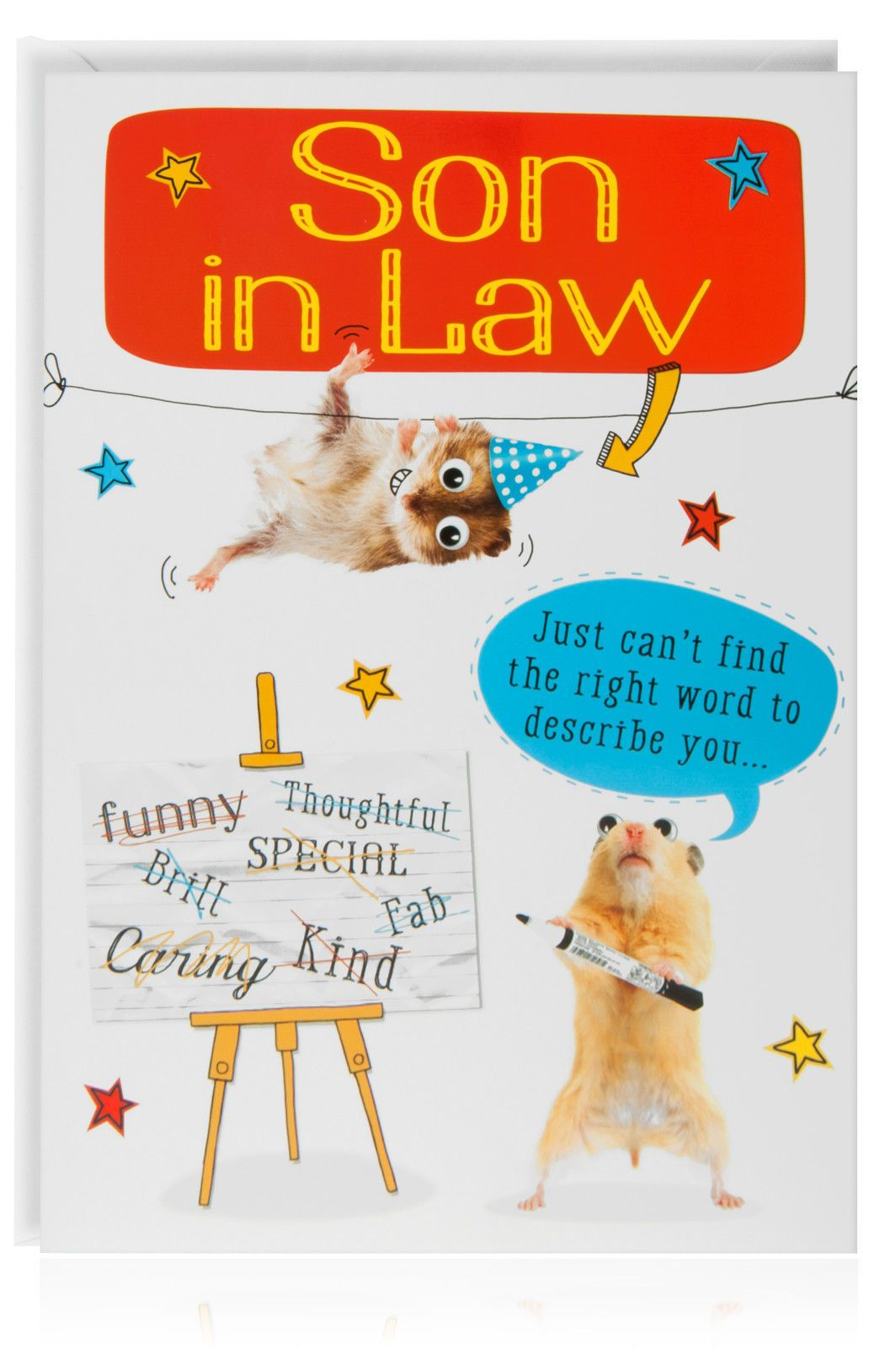 Son In Law Birthday Funny Humour Joke Card Greetings Animal Hamster
