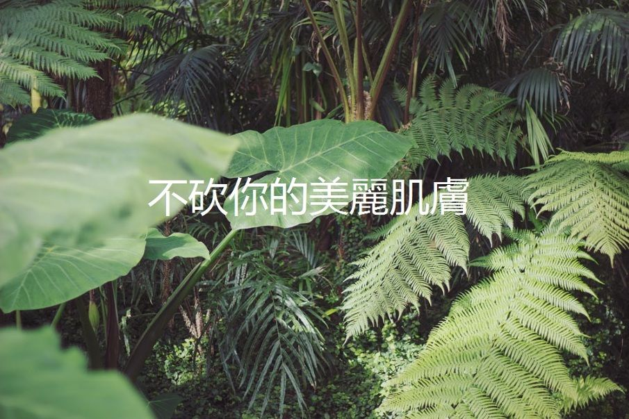 tumblr_n64y15DLaW1qzgzyuo1_1280.jpg (905×603)