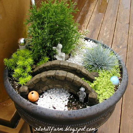 Plant a charming container fairy garden.