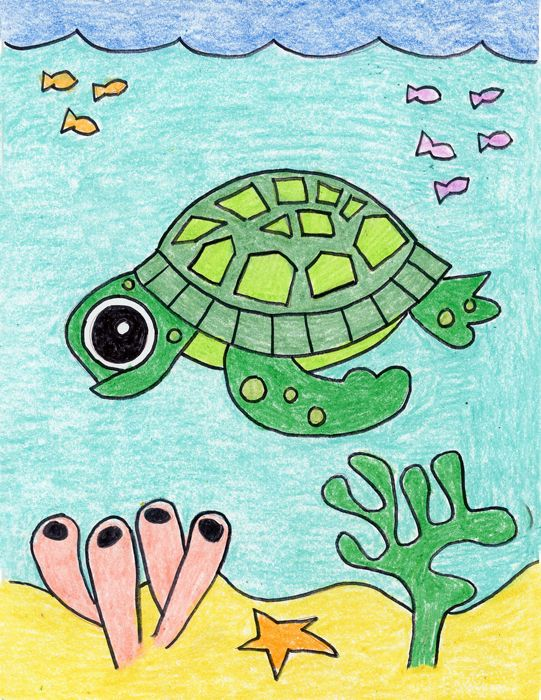 How To Draw A Cute Turtle Turtle Drawing Art Drawings For Kids