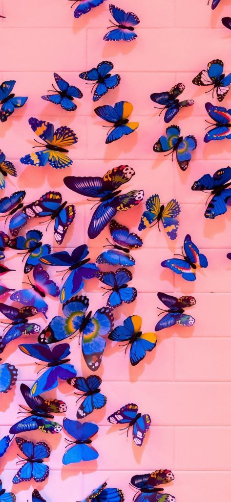 Tons of awesome lofi iphone wallpapers to download for free. Artistic Butterfly iPhone Xs Max Wallpaper   Butterfly ...