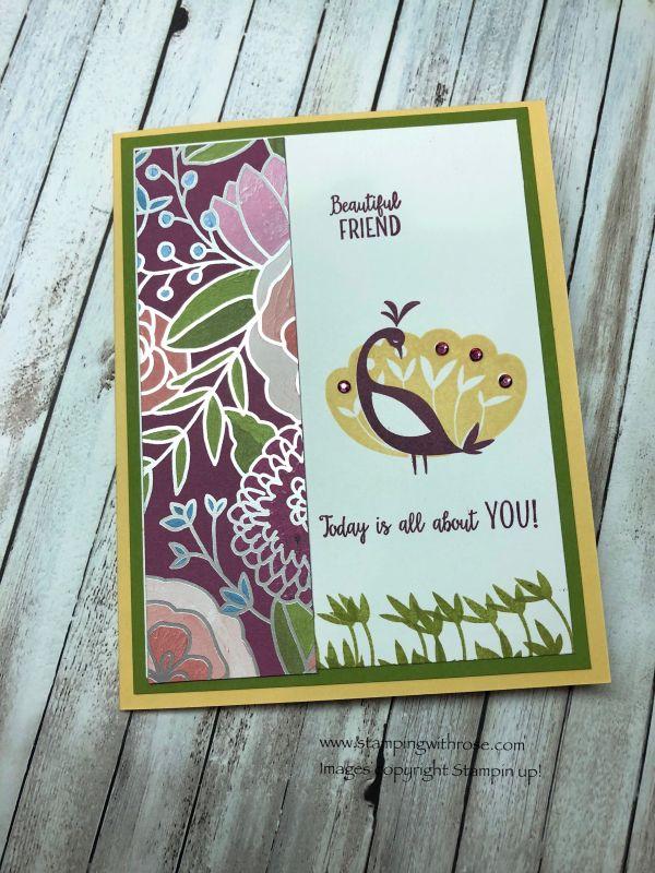 beautiful peacock set  beautiful handmade cards stampin