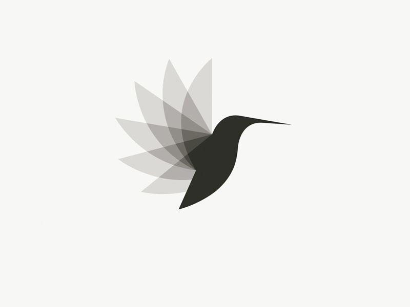 Logo Inspiration Design Pinterest Brand Identity Hummingbird
