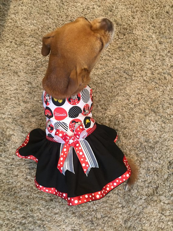Minnie Mouse Dog Dress Dog Tutu Dress Black Red Dog Dress