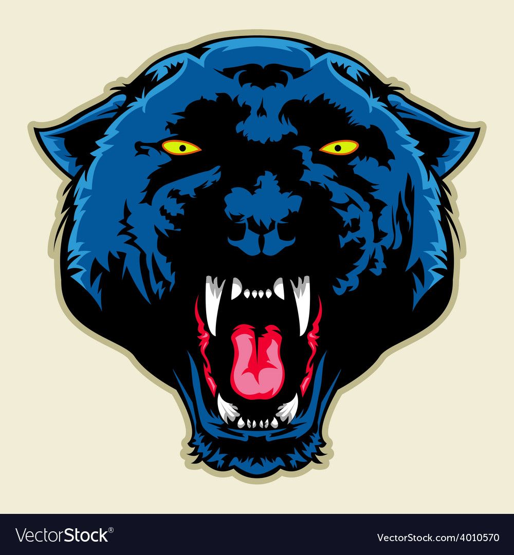 Angry Black Panther Head vector image on Black panther