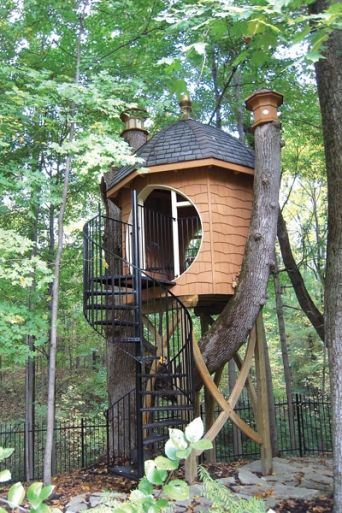 This is such a beautiful tree house! And the tree has historical  significance. #
