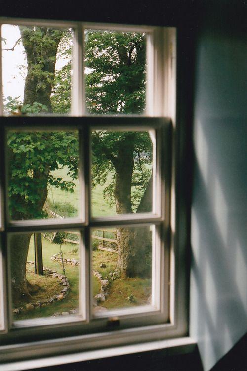 Photography Interiors Window Home Colour Light Trees View House Vid Iz Okna Dizajn Interera Dlya Doma Okno