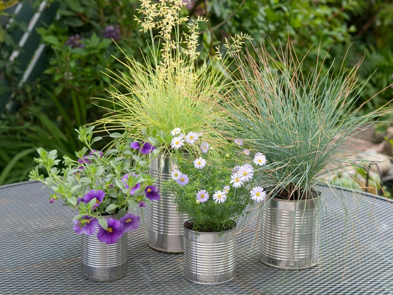 anything tons created ideas was plants is well to containers your my design wine repurposed and favorite an for beautiful garden here a mini sponge places that from great one old visit barrel of