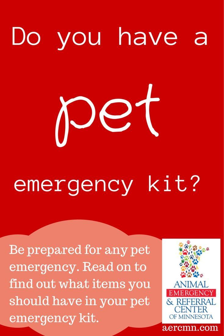 13+ Animal emergency center okc images