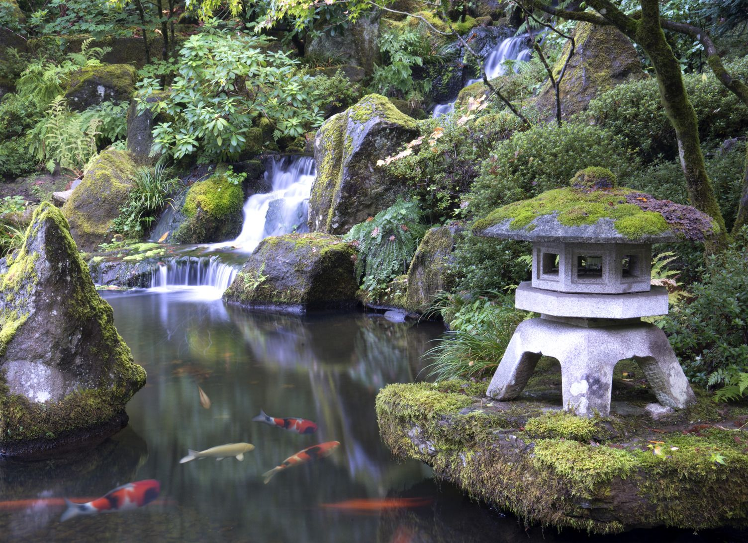 Experience the seasons of the Portland Japanese Garden