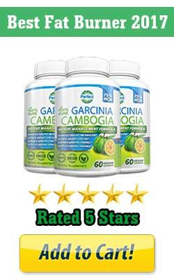 Top Rated Garcinia Cambogia Me Time Health Fitness