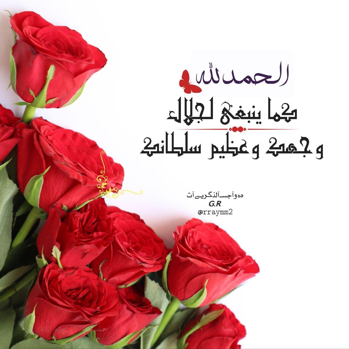 Pin By هہ وآجسـ آلذگريـﮯآت 𝙂 𝙍 On G R Plants Rose Flowers