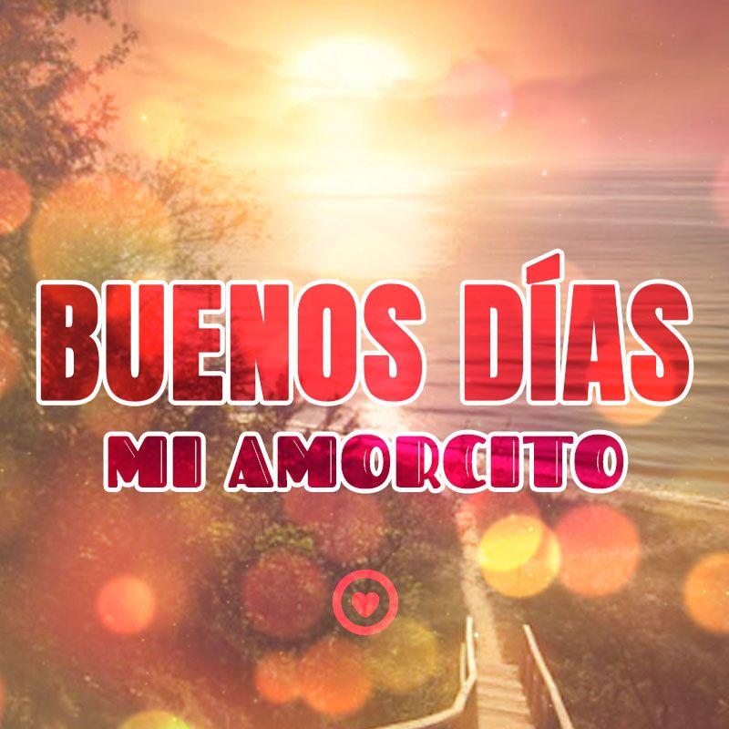Buenos Dias Mi Amorcito Frases De Amor De Buenos Dias Morning