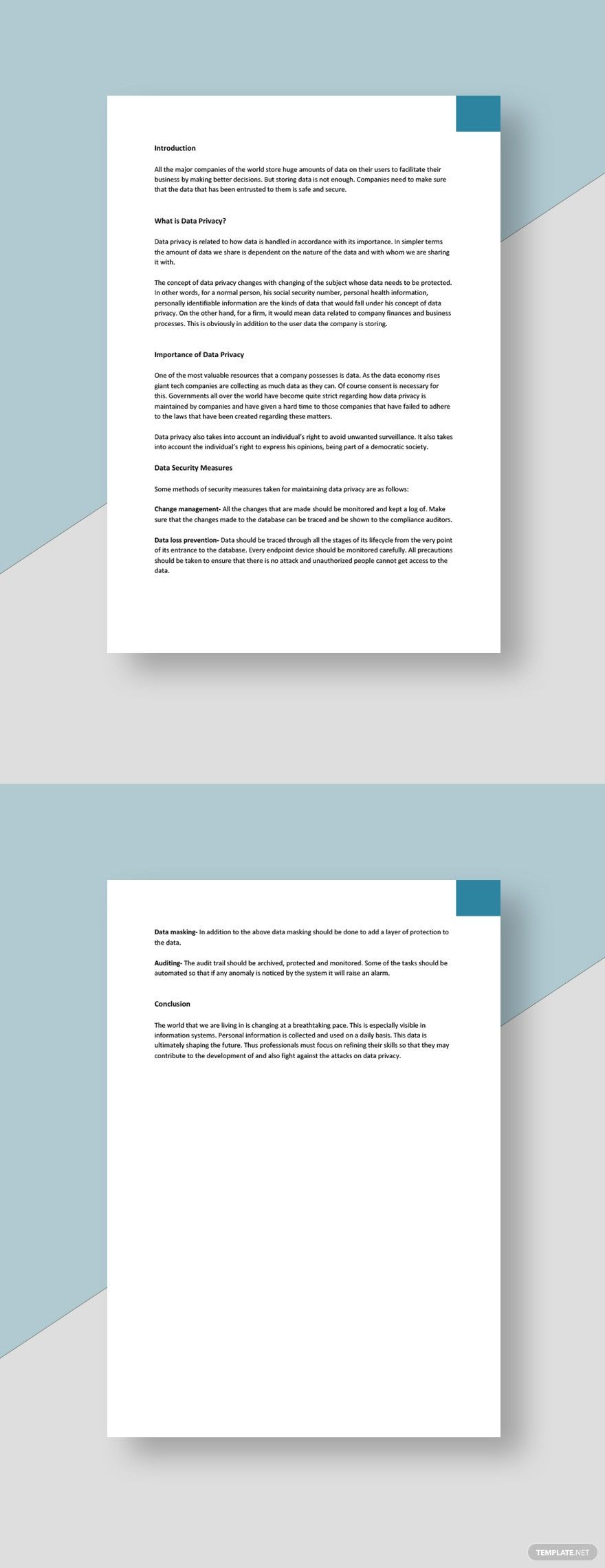 Data Privacy White Paper Template Free Google Docs Word Template Net Paper Template Paper Template Free Policy Template