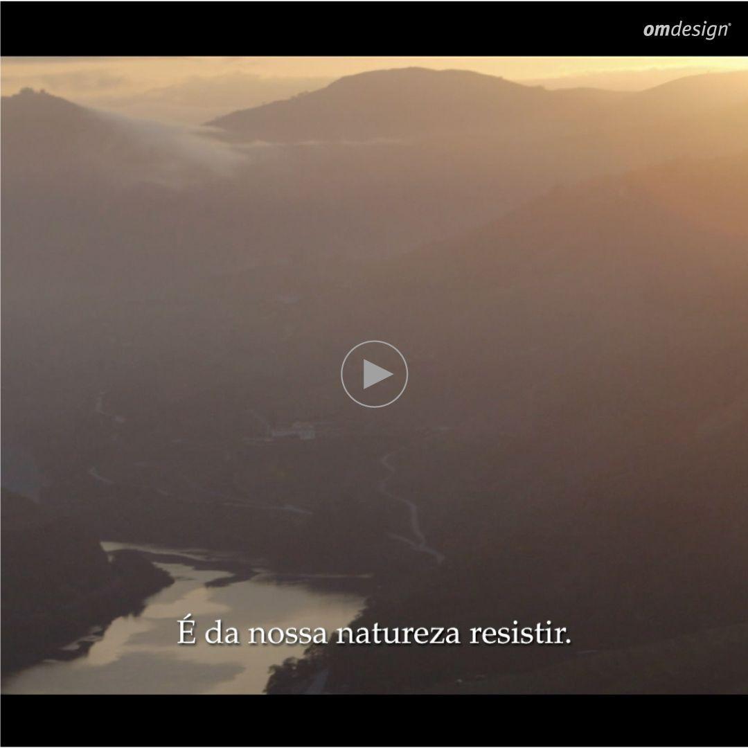 """Filme Sogrape – """"A homage to the classic Vintage"""" (2020)   #Omdesign #Design #Portugal #LeçadaPalmeira #Since1998 #WinePackaging #ConceptualFilm #PortoFerreira #Sandeman #Offley #SograpeVinhos #Sogrape #AwardedAgency #Awards #IVDP #PortWine #Vintage2018 #Douro #Nature #Porto"""