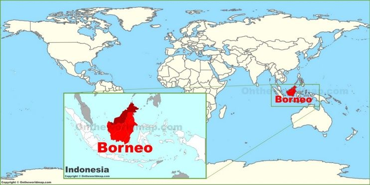 Borneo on the world map maps pinterest borneo on the world map gumiabroncs Image collections