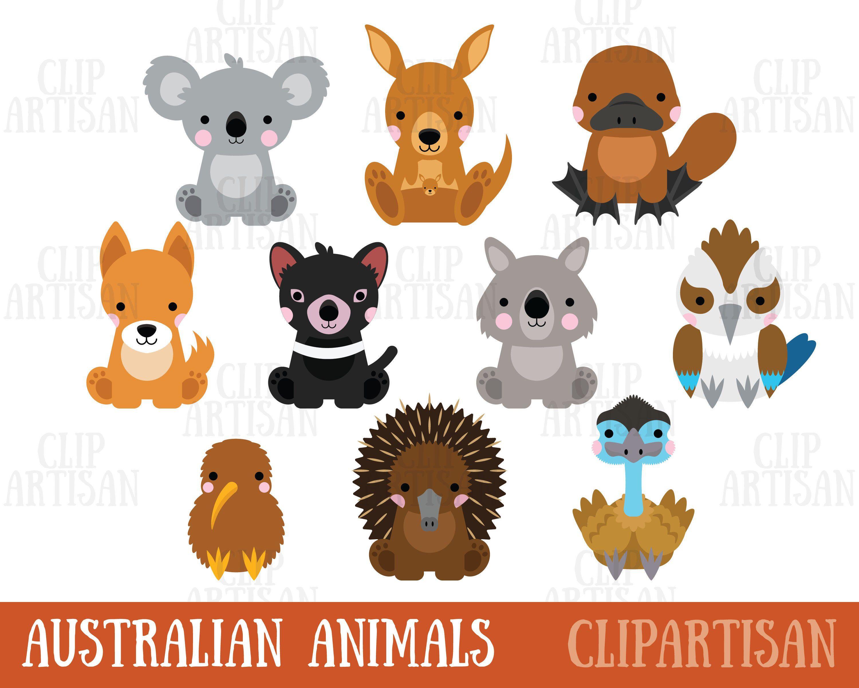 Australian Animals Clipart Koala Kangaroo Wombat Echidna Etsy Animal Clipart Australian Animals Cute Animal Clipart