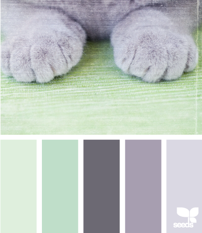 Minty green and fluffy grey
