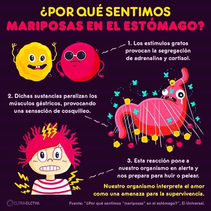 Pin de Jessica Chapa en Psychology | Pinterest | Datos curiosos ...
