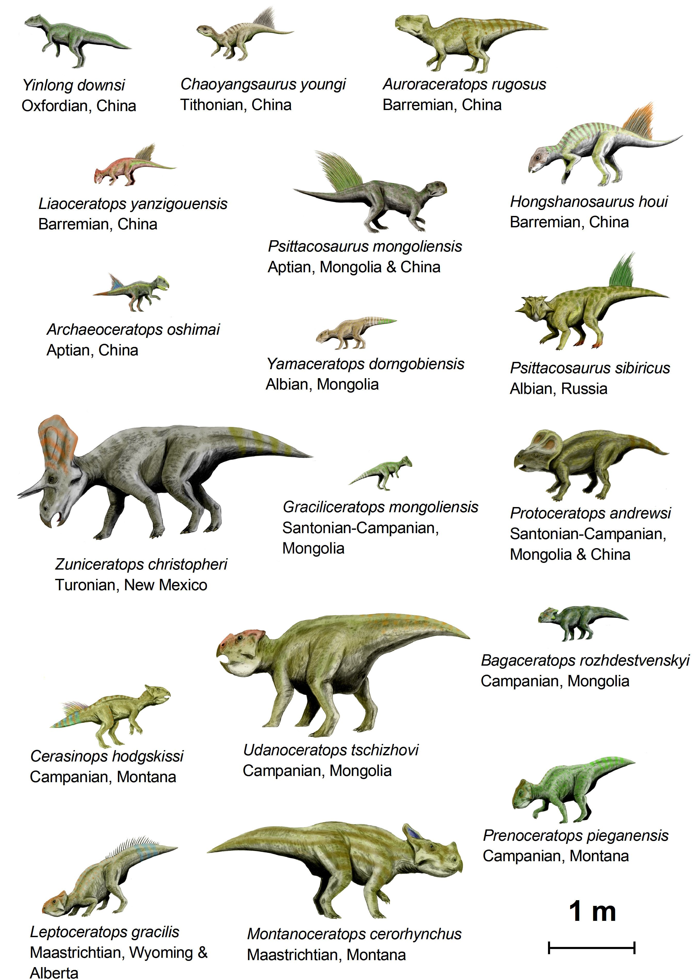 dinosaurs names and pictures a-z pdf