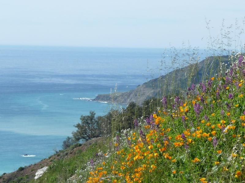 1 Bedroom Rental Home in Big Sur - 21 reviews and 27 photos