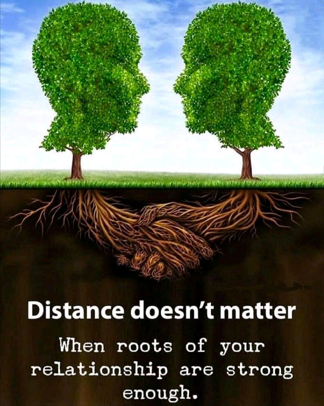 Distance Doesn T Matter Morning Greetings Quotes Roots Good Morning Quotes