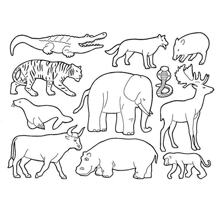 Coloriage animaux de la savane zoo pinterest - Coloriage animaux de la jungle ...