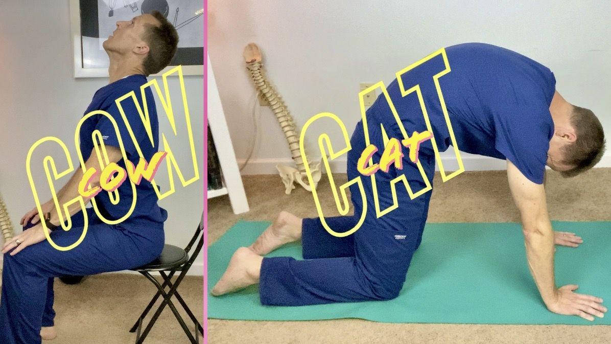 Alternative To Cat Cow Pose