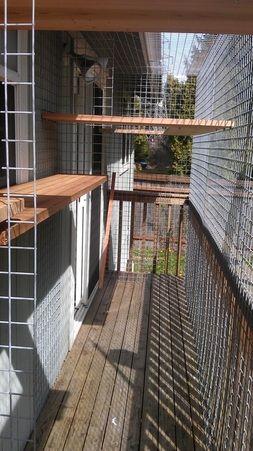 Pet Enclosures Northwest Pet Enclosure Dog Enclosures Outdoor Pet Enclosure