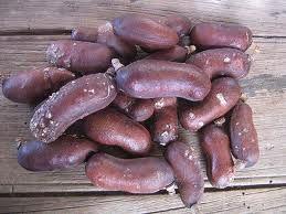 Receita do Remédio Natural VINHO DE JATOBÁ  Veja mais em http://www.comofazer.org/saude/receita-do-remedio-natural-vinho-de-jatoba/