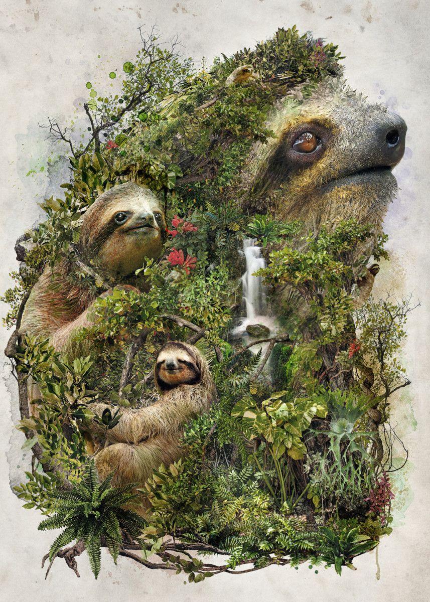 Displate Poster My original animal art of the sloth sloth