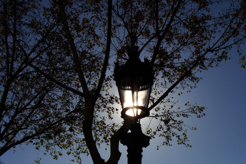 Natural sunlight  By Le Devegili
