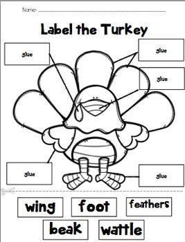 Label the Turkey   Preschool labels, Thanksgiving ...