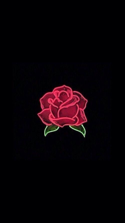 Rose Drawing Wallpaper Iphone