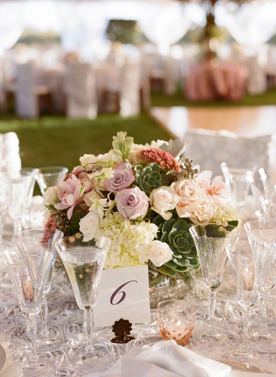 Enchanting + Elegant Vineyard Wedding Orchid