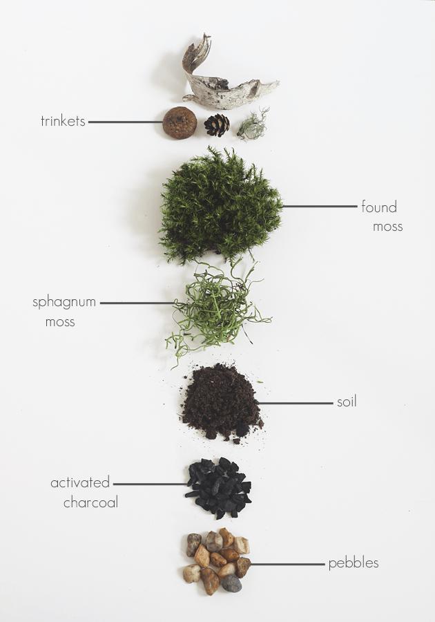 Diy Found Moss Terrarium Outdoor Inspiration Terrarium Diy