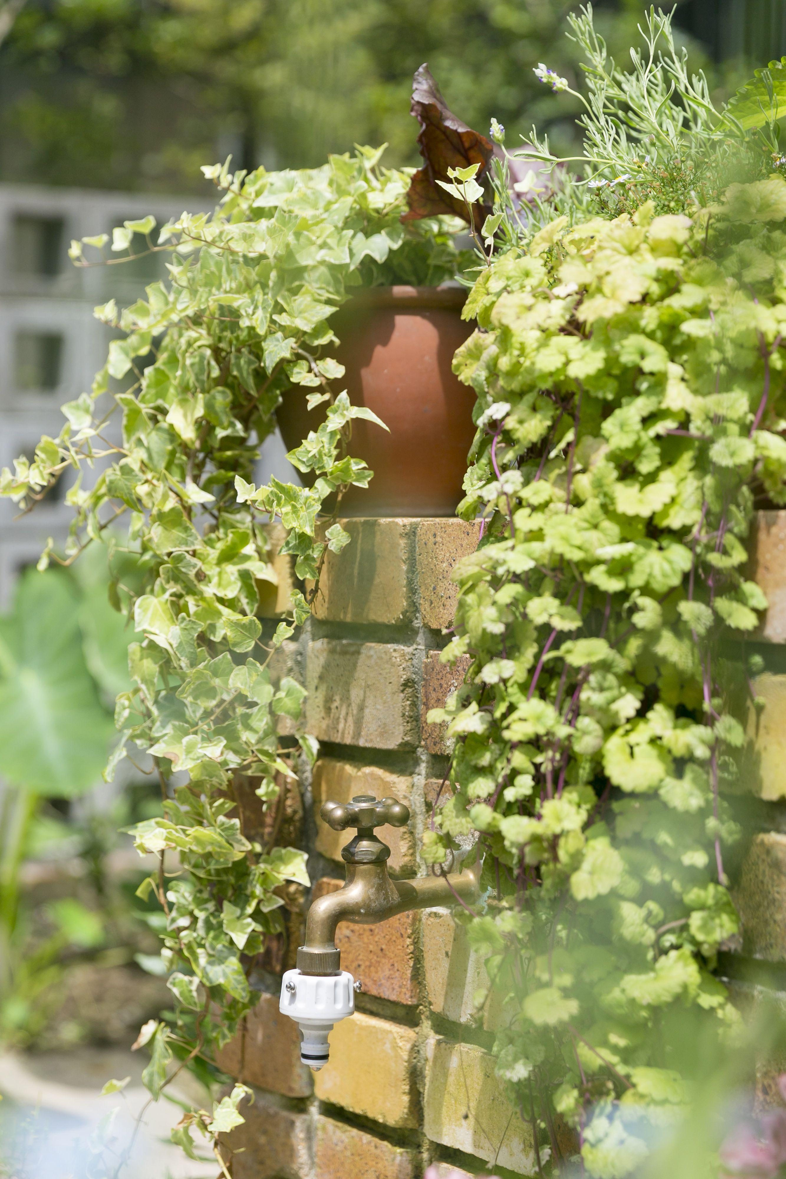大好きな緑につつまれて暮らす~こだわりのガーデニングスタイル~3 ディーズガーデン×ディーズカーサの庭の施工例です #庭#ガーデン#ガーデニング#植栽