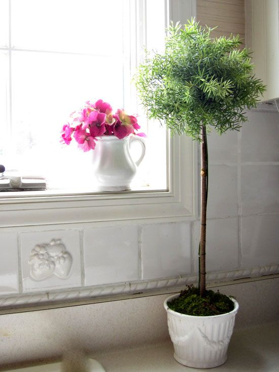 diy: easy faux topiary...