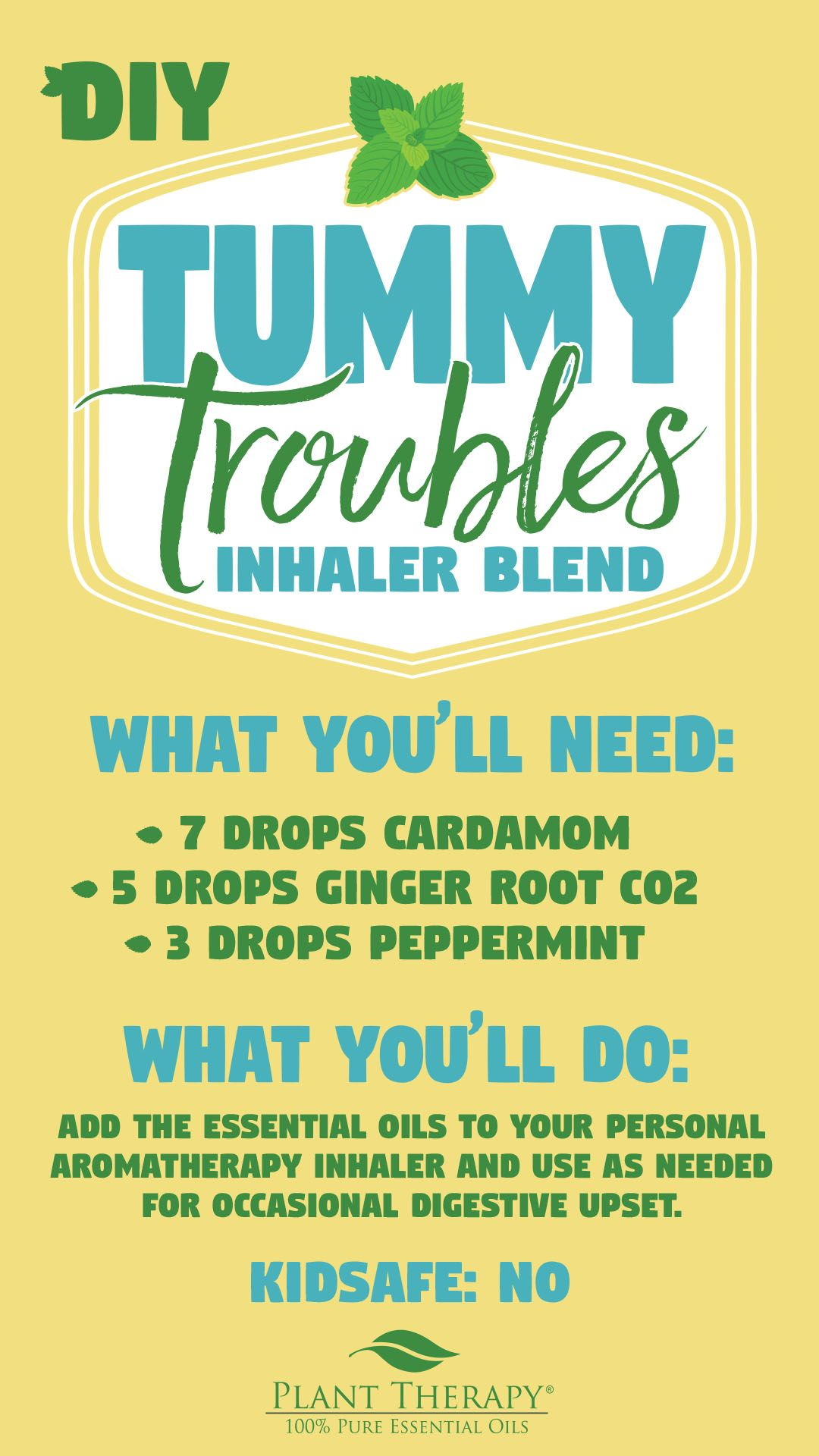 Essential Oils And Car Sickness Plant Therapy Essential Oils Essential Oil Inhaler