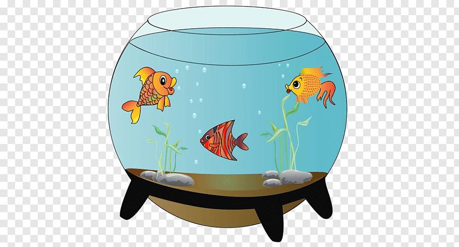 Pin By Eugene Knyshev On Precompose Cartoon Fish Siamese Fighting Fish Fish Drawings