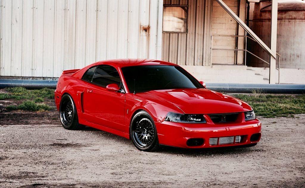 Svt Cobra Ford Mustang Cobra Mustang Cobra Ford Mustang