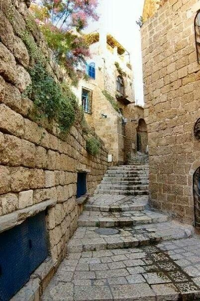 Yafa - Palestine