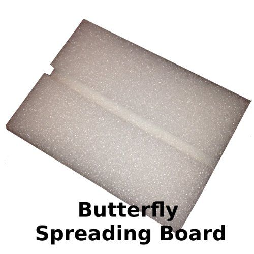 Butterfly Spreading Board Students Biss Student Pack Butterfly Student