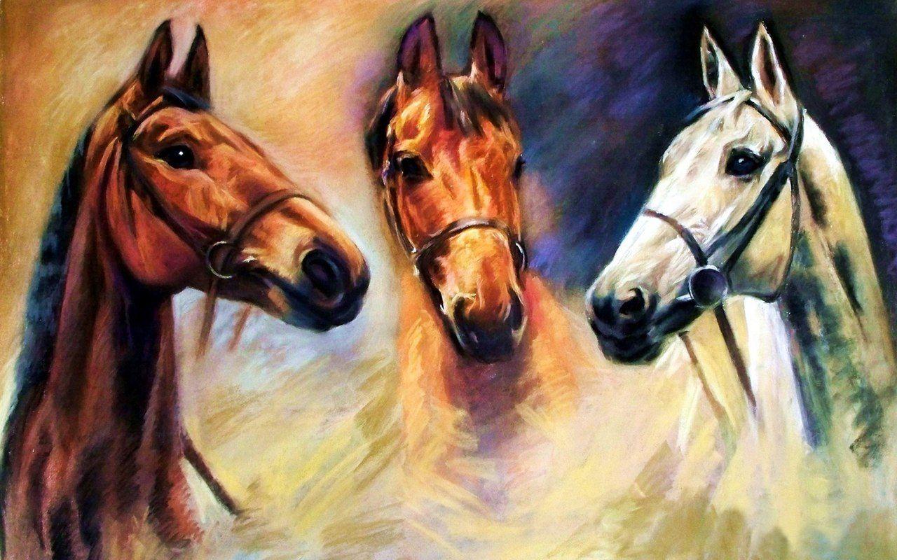 Смешная, лошадь открытки