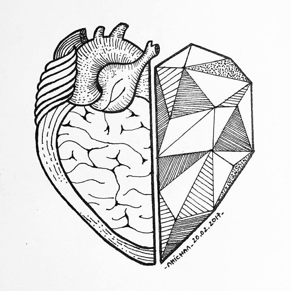 Half sketch heart diagram trusted wiring diagram half sketch heart diagram introduction to electrical wiring diagrams u2022 rh jillkamil com brain sketch drawing ccuart Images