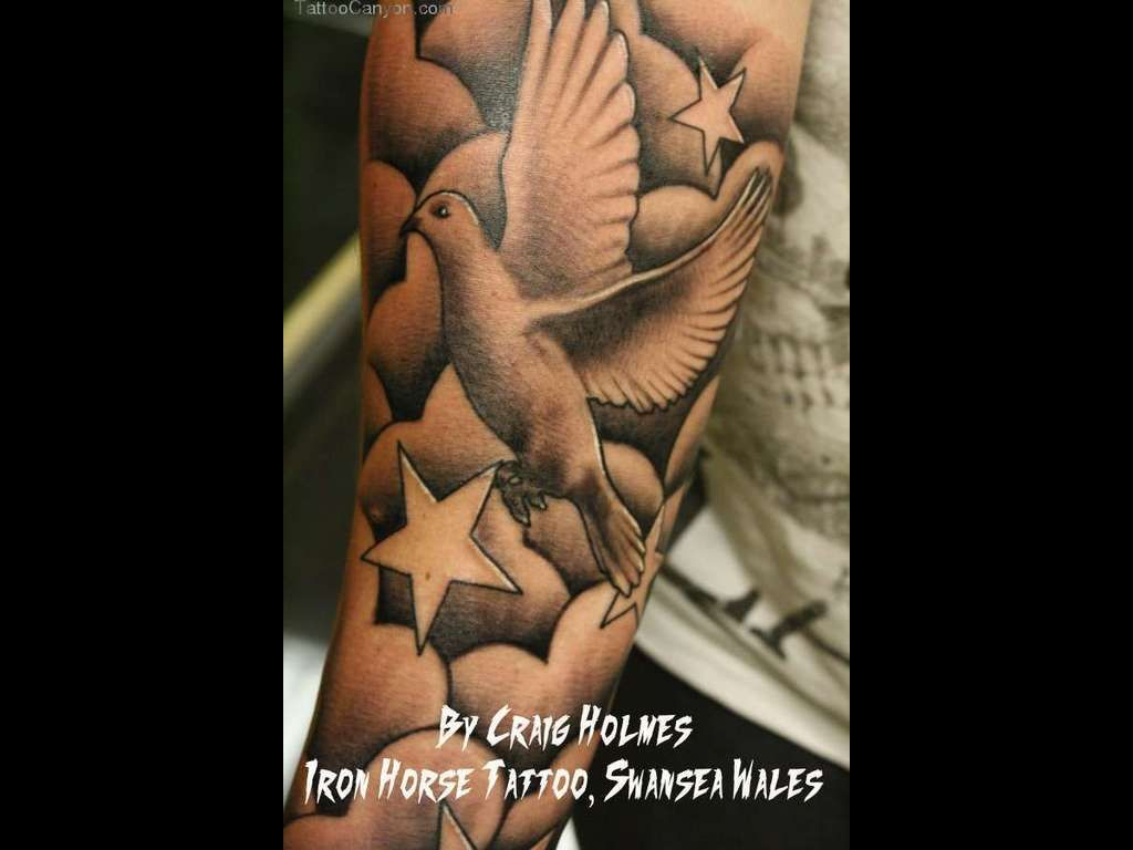 23+ Awesome Dove tattoo designs with clouds ideas