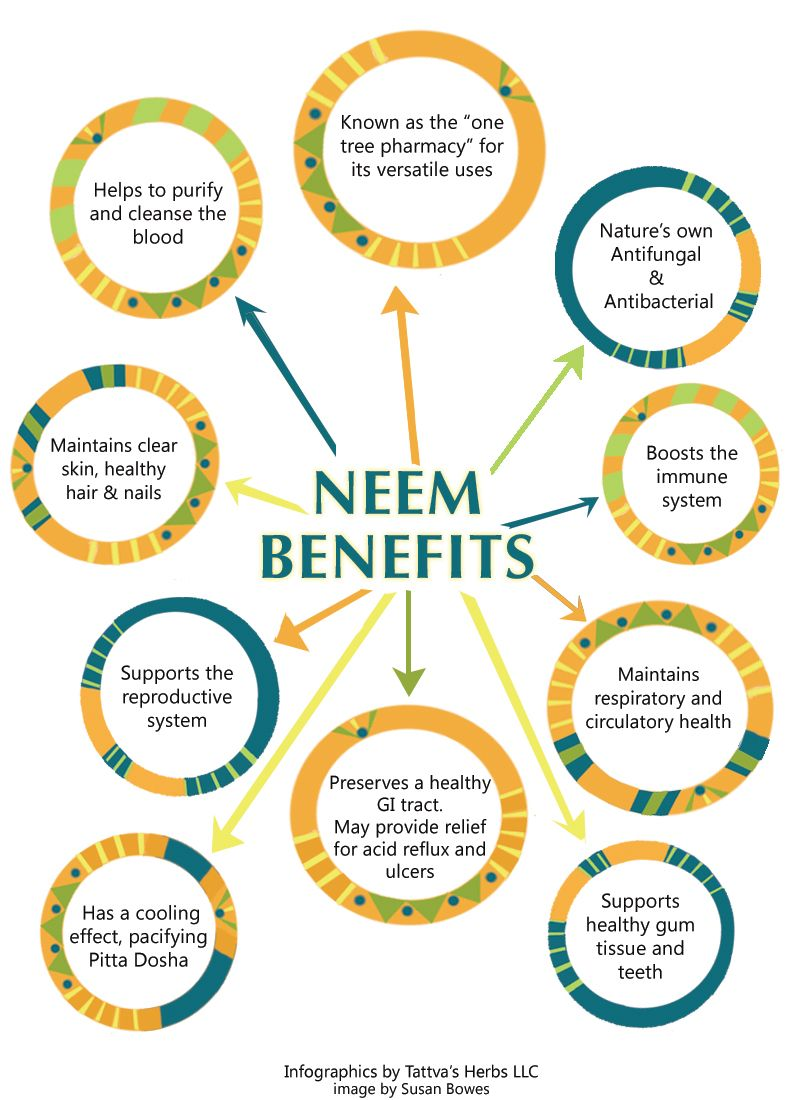 amazing benefits uses of neem infographics about amazing benefits uses of neem infographics about benefitsofneem by
